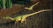 Coelophysis bauri (Jurassic World Evolution 2)