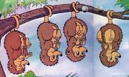 Four-plump-possums-in-counting-fun-from-disney-discovery-series
