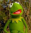 KermitYoung.JPG