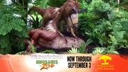 Pittsburgh Zoo Deinonychus