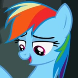 Rainbow Dash in My Little Pony- Friendship is Magic.jpg