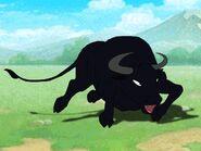 Rileys Adventures Spanish Fighting Bull