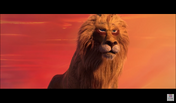 Lion in Lion (2019)