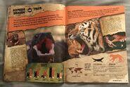 Predator Showdown (5)