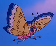 Simba the king lion butterfly