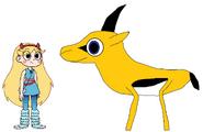 Star meets Springbok