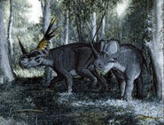 Styracosaurus-encyclopedia-3dda