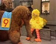 Episode 1130- Big Bird drifts off to sleep, just before Snuffy arrives and slurps down the juice