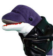 Loan Dolphin PNG.png