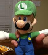 Luigi in Kirbstomp