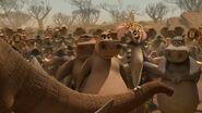 Madagascar2-disneyscreencaps.com-7413