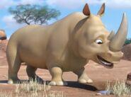 Rhinoceros jungle beat
