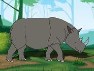 Rileys Adventures Sumatran Rhinoceros