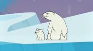 Bears, Polar (Total Drama World Tour)