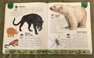 Deadly Creatures Dictionary (17)