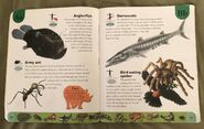 Deadly Creatures Dictionary (2)