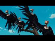 IA2TM Vultures