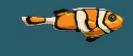 MSB Clownfish