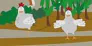 South Park Chickens
