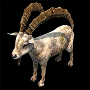 AoE2DE ingame ibex icon