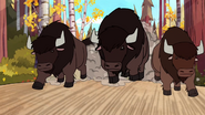 Bison, American (Gravity Falls)