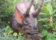 Columbus Zoo Triceratops