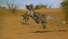 Dinosaur.Planet.1of4.White.Tips.Journey.XviD.AC3.www.mvgroup.org.avi snapshot 08.16 -2016.12.28 13.21.23-.jpg