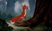 Fox-and-the-hound-disneyscreencaps.com-6634