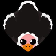 Mopeio Ostrich