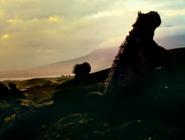 Oceans 2010 Iguanas