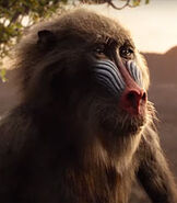 Rafiki in The Lion King (2019)