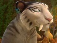 Shira the Tiger