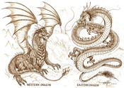 European and Chinese Dragons