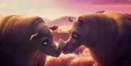 Lil Dicky Rhinos