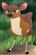 Mouse Deer TLG