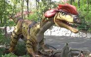 Saint Louis Zoo Dilophosaurus