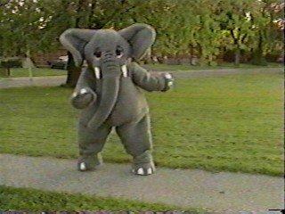 Elephant (The Elephant Show)