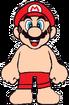Mario Swimsuit