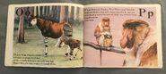 The Furry Animal Alphabet Book (9)