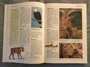 The Kingfisher Illustrated Encyclopedia of Animals (12)