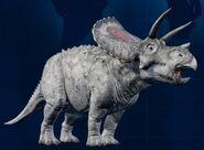 328px-Torosaurus