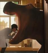 Doolitle 2020 Hippo