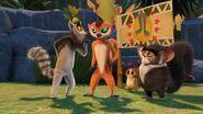 LemursfourTBW