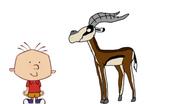 Stanley Griff meets Speke's Gazelle