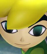 Toon Link in Hyrule Warriors