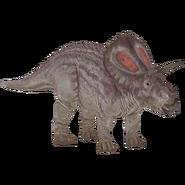 Torosaurus WTJW