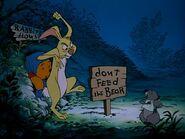 DON'T FEED THE BEAR!