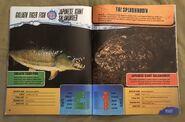 Predator Splashdown (22)