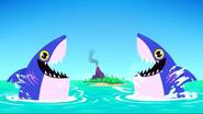 TTGIA Sharks
