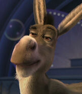 Donkey in the Shrek Shorts